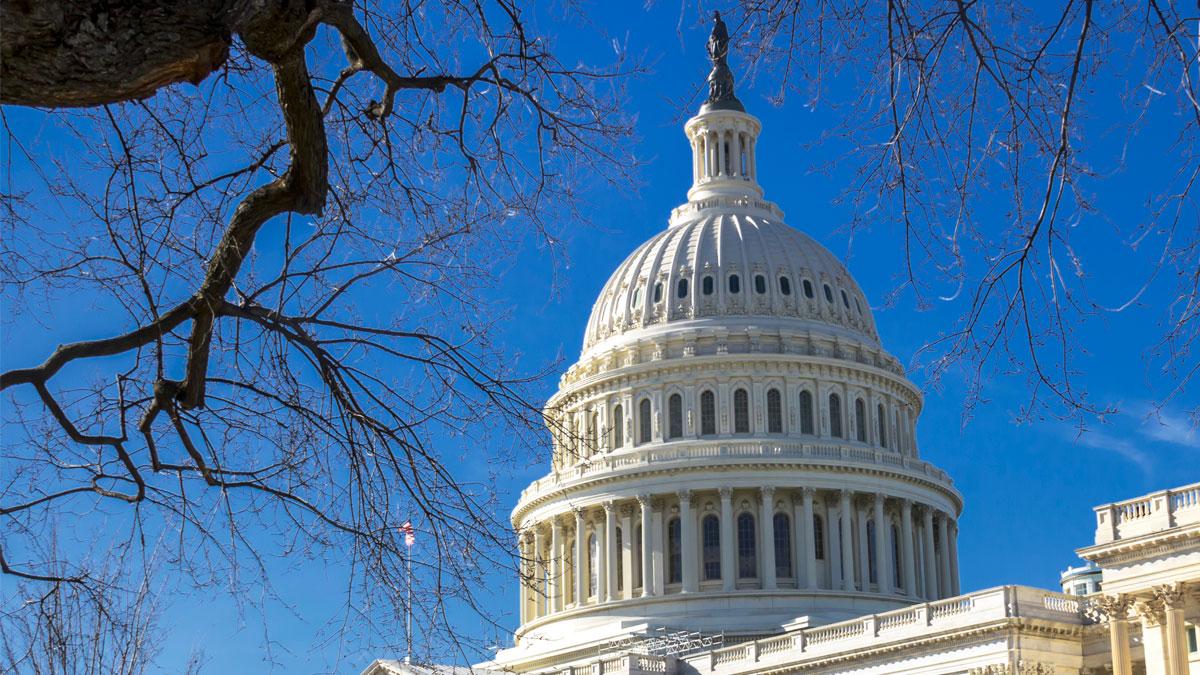 Biosimilars In US Drug Pricing Debate: Second Chance – Or