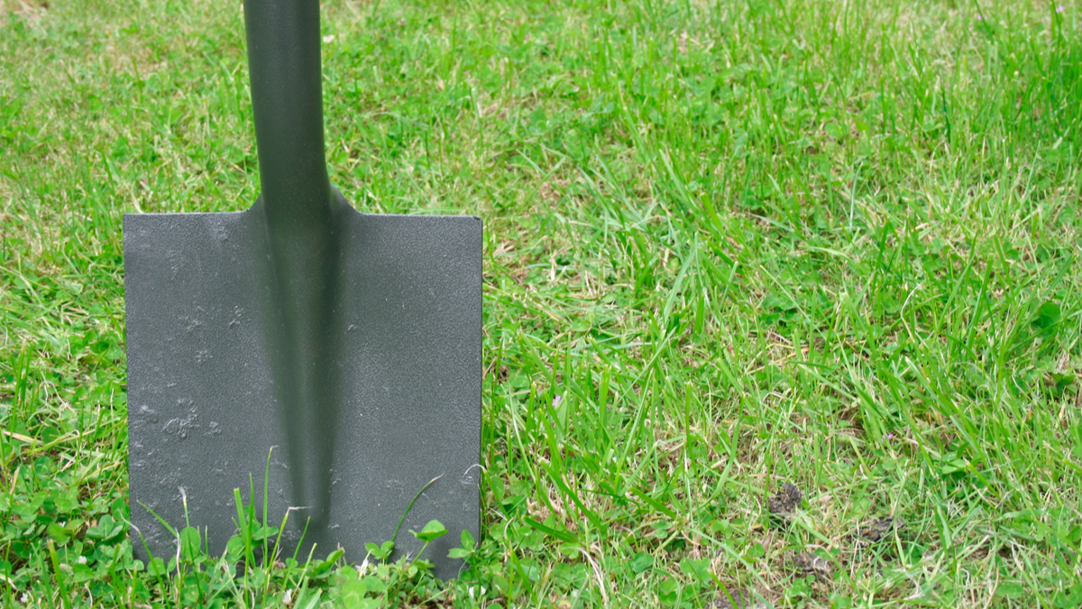 Spade in the ground - Image