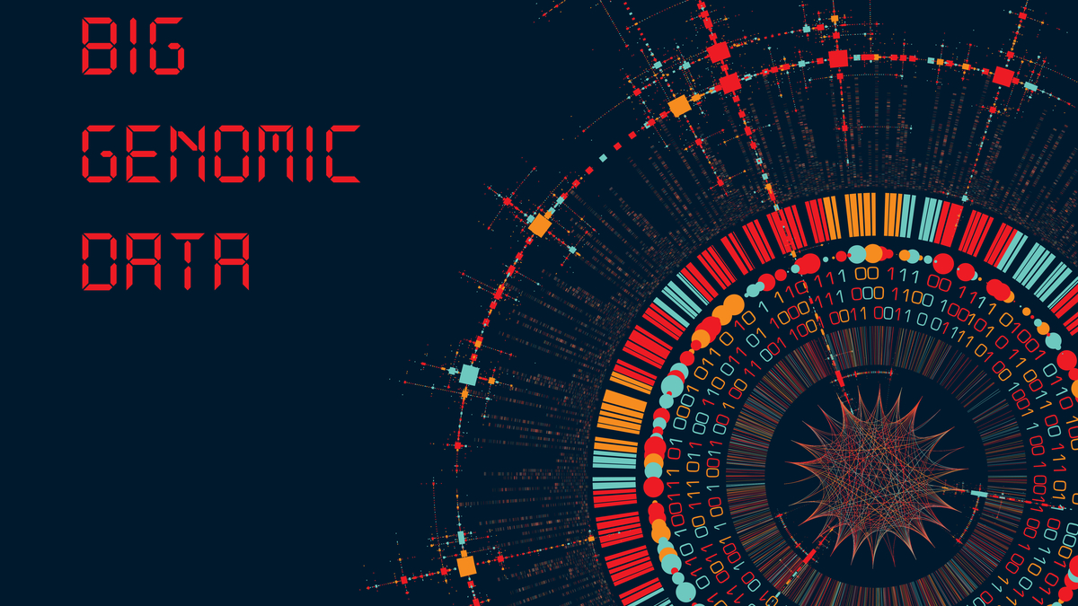 Big Genomic Data Visualization - DNA Test, Barcoding, Genom Map Architecture - Vector Graphic Template - Vector
