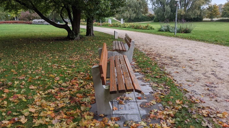 two benches in a park in autumn that point in different directons