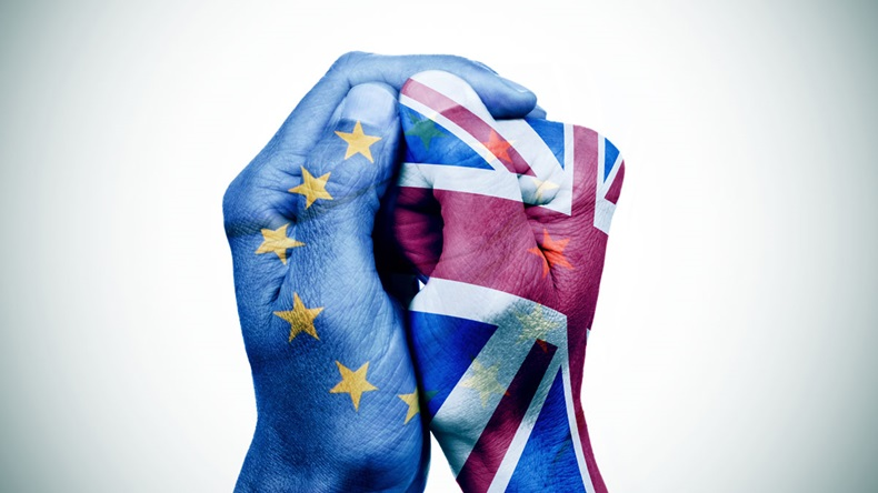 EU & UK painted hands