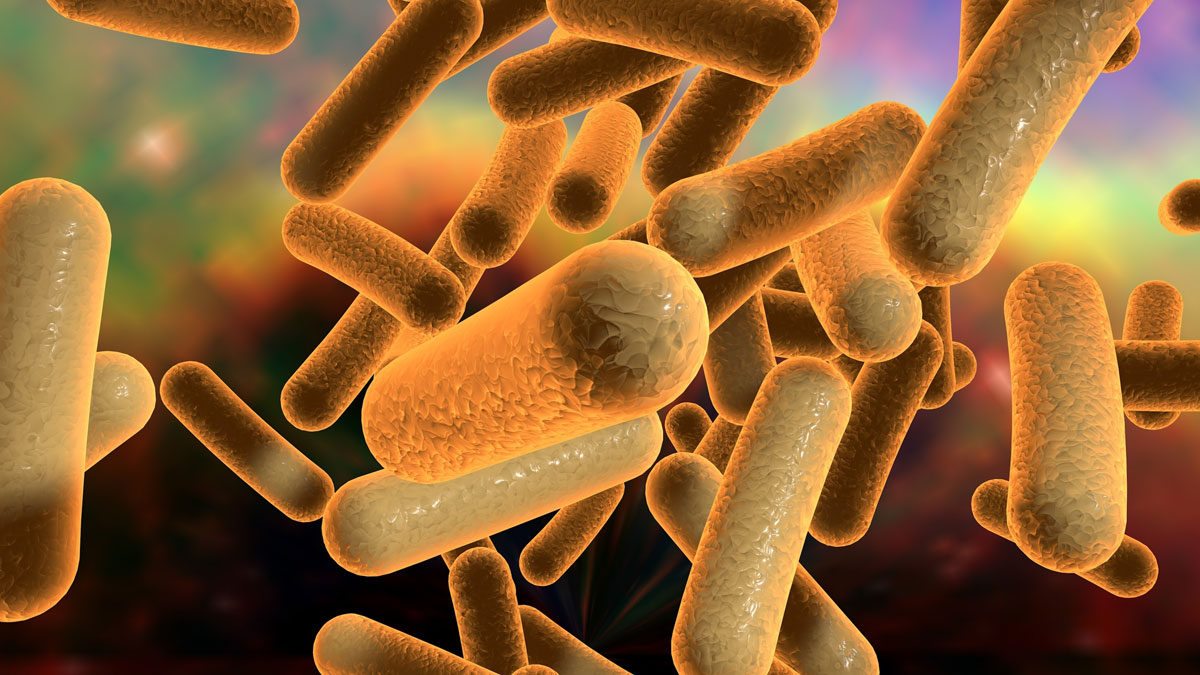 Illustration of bacteria on colorful background, model of bacteria, microbes, microorganisms,