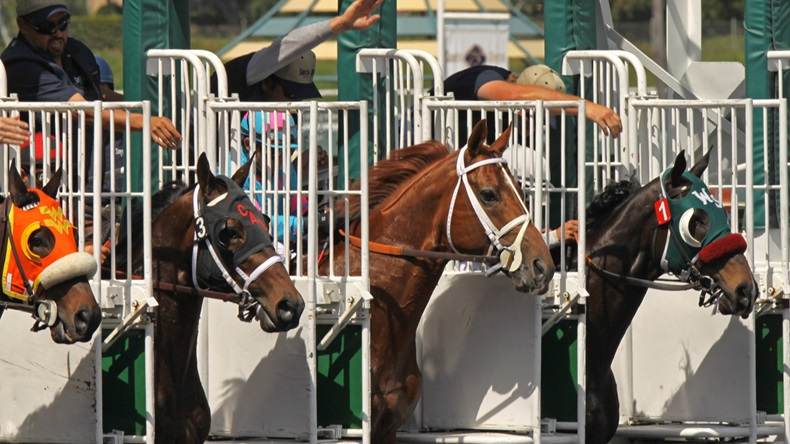 Editorial use only - ARCADIA, CA - MAR 20: Horses break from the gate in an allowance race at Santa Anita Park on Mar 20, 2010 in Arcadia, CA